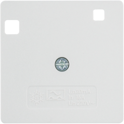 14961909 50 x 50 mm centre plate for RCD protection switch System 50 x 50 mm,  polar white matt/velvety