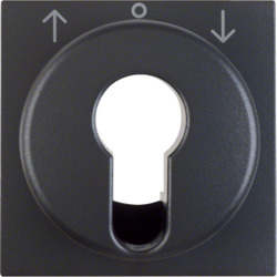 15061606 Centre plate for key push-button for blinds/key switch anthracite,  matt