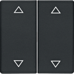 16446086 Rocker 2gang with imprinted arrows symbol Berker Q.1/Q.3/Q.7/Q.9, anthracite velvety,  lacquered