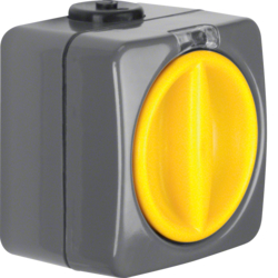 3046 Rrotary switch off/change-over surface-mounted Iso-Panzer IP66, dark grey/yellow