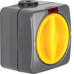 3142 Control rotary switch 2pole off surface-mounted with red lens,  Iso-Panzer IP66, dark grey/yellow