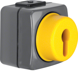 4386 Change-over switch 2pole surface-mounted for lock cylinders Iso-Panzer IP44, dark grey/yellow