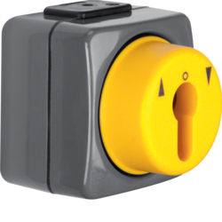 4391 Push-button for blinds 1pole with imprint surface-mounted for lock cylinder with neutral-position,  Iso-Panzer IP44, dark grey/yellow