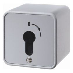 4466 Change-over switch 2pole with imprint surface-mounted for lock cylinders with screw terminals,  Die-Cast IP44