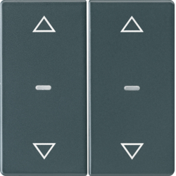 80961326 Cover for 2gang for push-button module with clear lenses,  KNX - Berker Q.1/Q.3, anthracite velvety,  lacquered