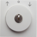 10818989 Centre plate with lock and push lock function for switch for blinds Key can be removed in 0 position,  Berker S.1/B.3/B.7, polar white glossy