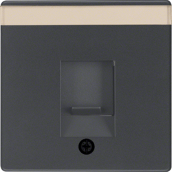 11706086 Centre plate with dust protection slider Labelling field,  anthracite velvety,  lacquered