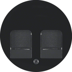 11812045 Centre plate with 2 dust protection sliders Labelling field,  black glossy