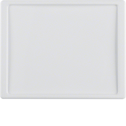 12040069 Centre plate for nurse call system Berker Arsys,  polar white glossy