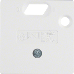 14931909 50 x 50 mm centre plate for RCD protection switch System 50 x 50 mm,  polar white matt/velvety