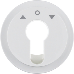 15062089 Centre plate for key push-button for blinds/key switch