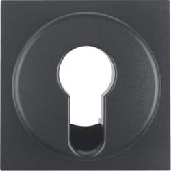 15071606 Centre plate for key switch/key push-button anthracite,  matt