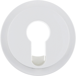 15072089 Centre plate for key switch/key push-button