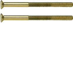 189512 Two-hole screws 2 x M3.5 x 50 mm gold glossy,  24-carat galvanised