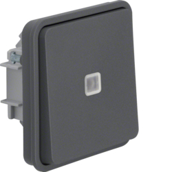 30863525 Illuminated change-over switch insert with rocker surface-mounted/flush-mounted with lens,  Berker W.1, grey matt