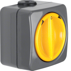 4342 Rotary switch for blinds 2pole with imprint surface-mounted Setting knob,  Isopanzer IP66, dark grey/yellow