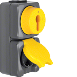 4432 Combination key switch/SCHUKO socket outlet with hinged cover and imprint surface-mounted Screw terminals,  Isopanzer IP44, dark grey/yellow
