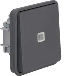 50463525 Push-button insert,  change-over contact,  illuminated surface-mounted/flush-mounted with lens,  Berker W.1, grey matt