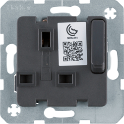53420216 Socket outlet insert with earthing contact BRITISH STANDARD,  can be switched off with enhanced touch protection,  with screw terminals,  Modul-inserts,  anthracite matt