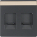 11816086 Centre plate with 2 dust protection sliders Labelling field,  anthracite velvety,  lacquered
