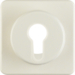 151912 Centre plate for key switch/key push-button Splash-protected flush-mounted IP44, white glossy